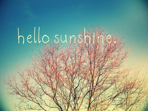 beautiful,hello,sunshine-66c697439e9d9f8302895b8c1d8a9096_h